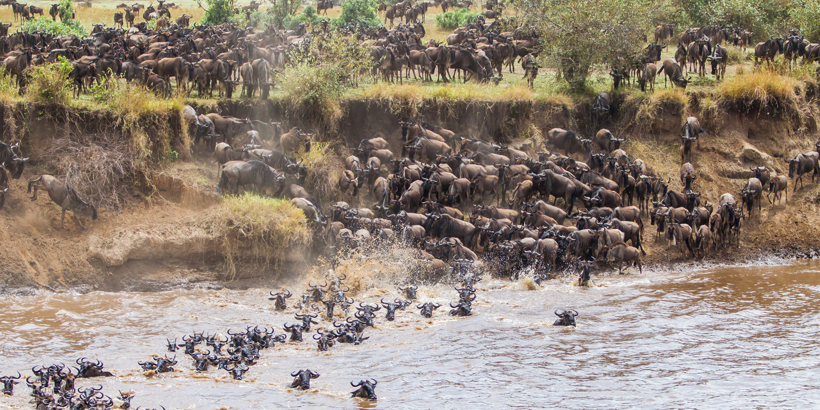 serengeti-wildebeest-migration-1600x800